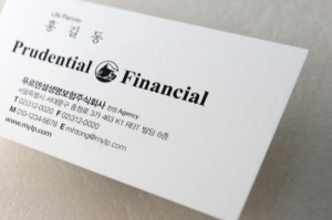 금융_보험 / DF 33102 /